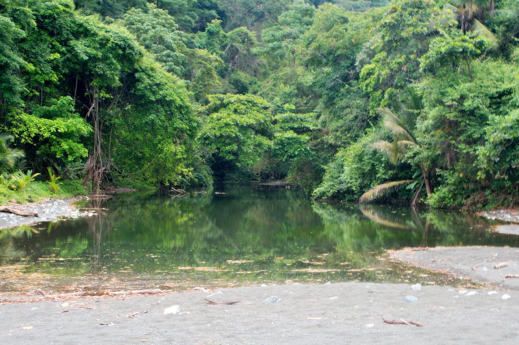 voyage-ecologique-costa-rica